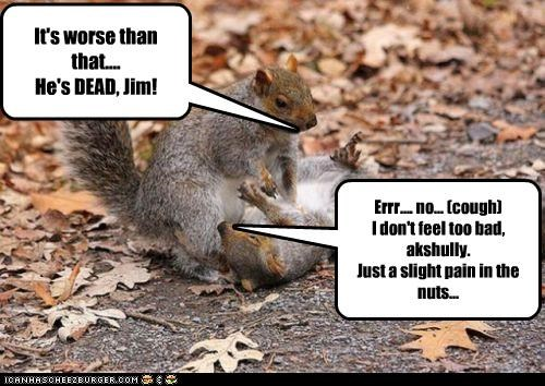 It's worse than that.... He's DEAD, Jim! Errr.... no... (cough) I don't feel too bad, akshully. Just a slight pain in the nuts...
