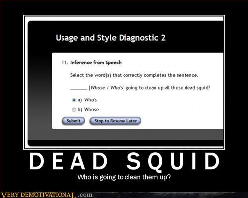 dead squid,hilarious,learning english