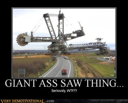 ass,giant,Pure Awesome,saw,seriously,thing,weird,wtf