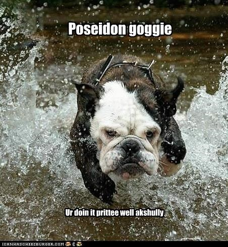 bulldog poseidon running water - 3096406784