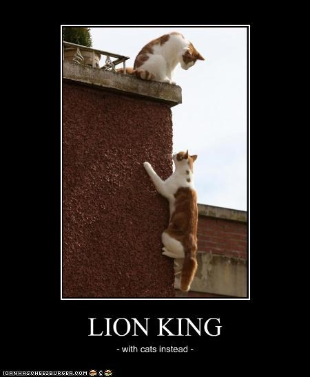 LION KING - with cats instead -