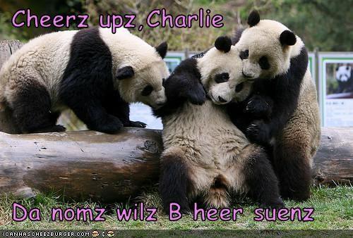 Cheezburger Image 3096783872