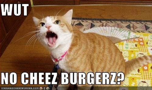Cheezburger Image 3098536960