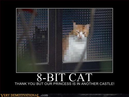 Cats Pure Awesome your princess is in another meow - 3099610624