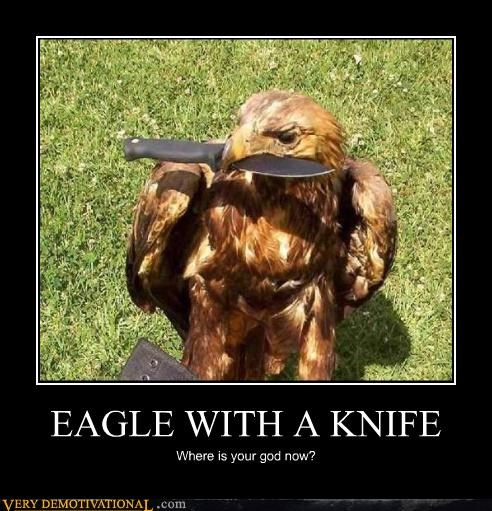 crazy,eagle,knife