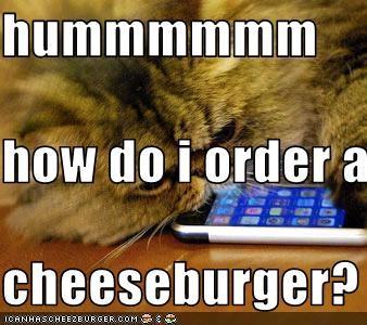 Cheezburger Image 3100339456