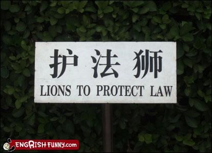 g rated law lions protect signs - 3101986560