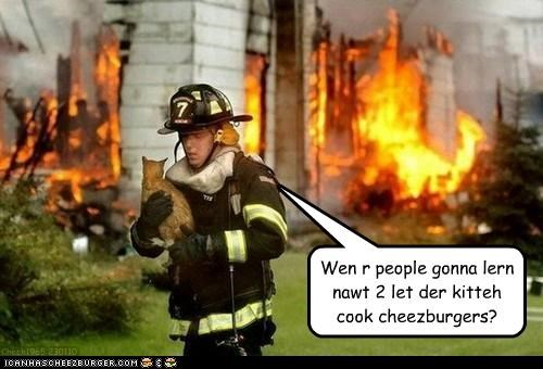 Cheezburger Image 3102399744