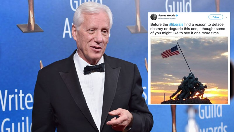 Collection of funny memes inspired by James Woods' bizarre statue tweets.