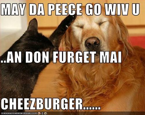 Cheezburger Image 3103933952