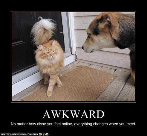 Awkward dating loldogs online - 3104114432