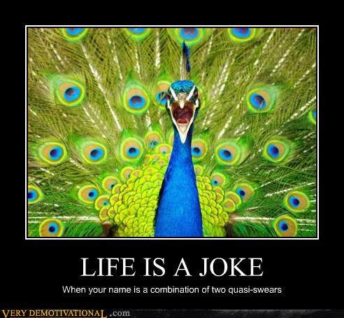 peacock joke name - 3105222400