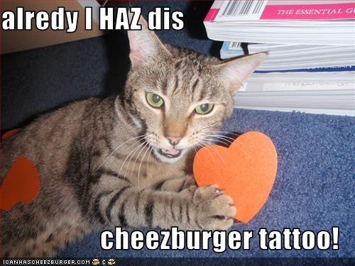 Cheezburger Image 3105338112