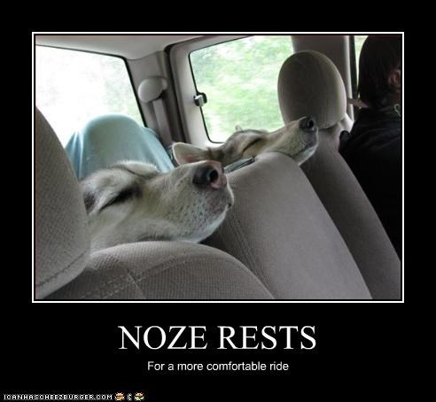 NOZE RESTS For a more comfortable ride