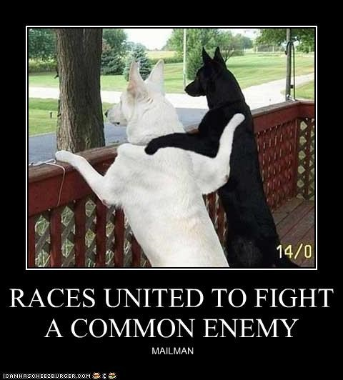 RACES UNITED TO FIGHT A COMMON ENEMY MAILMAN