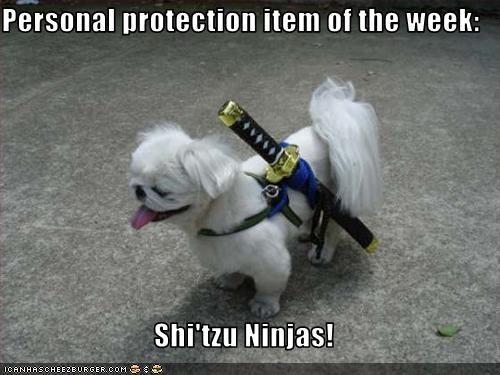 costume ninja personal protection shihtzu - 3108321280