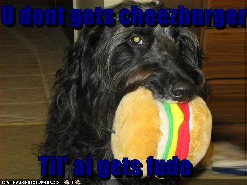 Cheezburger Image 3108835072