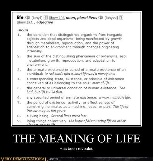 THE MEANING OF LIFE Has been revealed