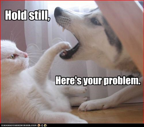 Hold still, Here's your problem.