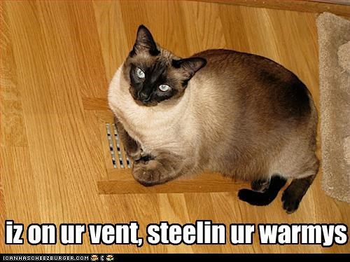 iz on ur vent, steelin ur warmys