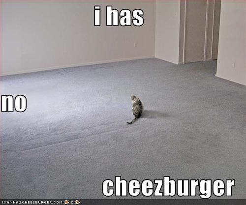 Cheezburger Image 3115521024