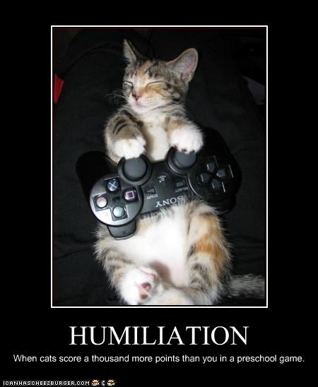 HUMILIATION When cats score a thousand more points than you in a preschool game.