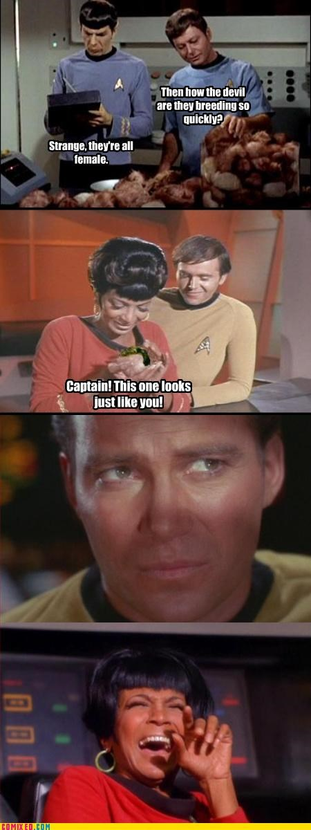 kirk,sexual addiction,Star Trek,tribbles