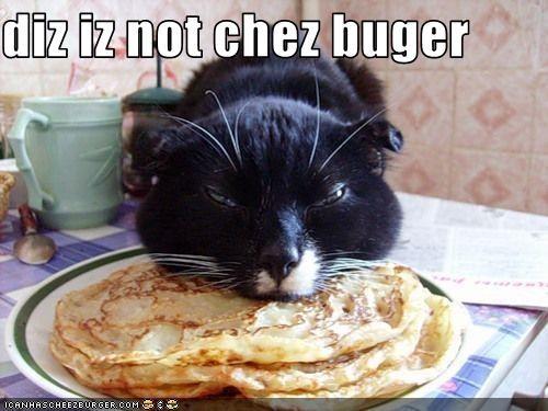 Cheezburger Image 3116980480