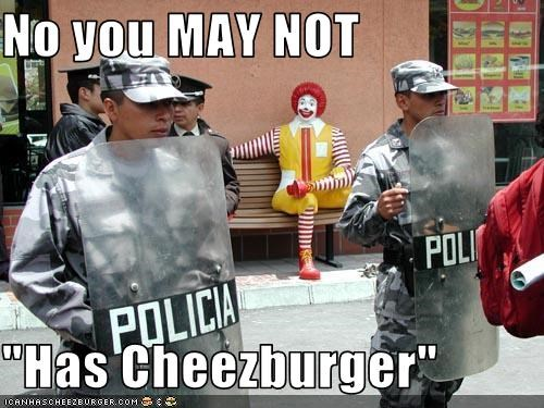 Cheezburger Image 3121697536