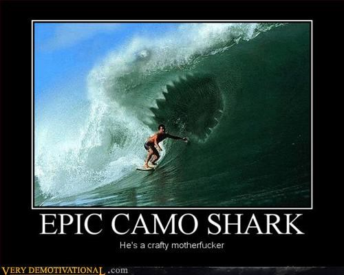 camo shark Deep Blue Ocean epic Pure Awesome Xtreme surfing - 3126523392