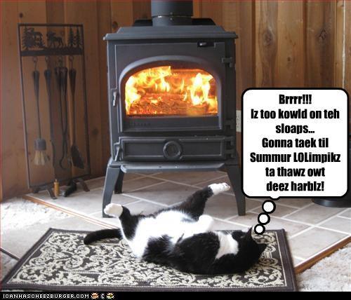 Brrrr!!! Iz too kowld on teh sloaps... Gonna taek til Summur LOLimpikz ta thawz owt deez harblz!