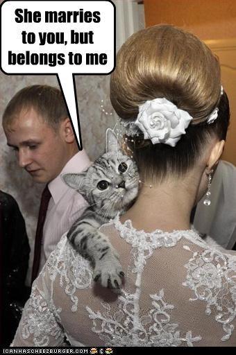 bride marriage threats - 3129773568