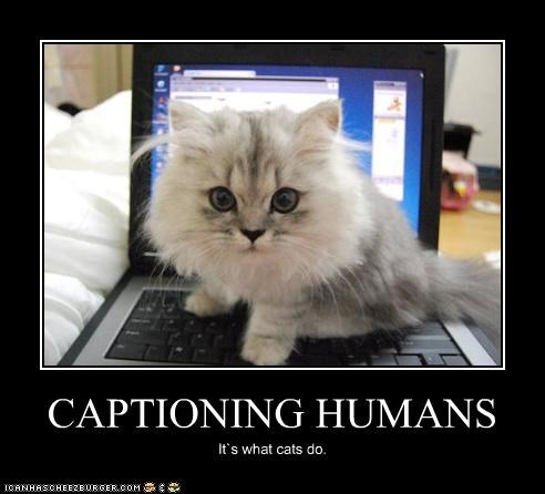 CAPTIONING HUMANS It`s what cats do.