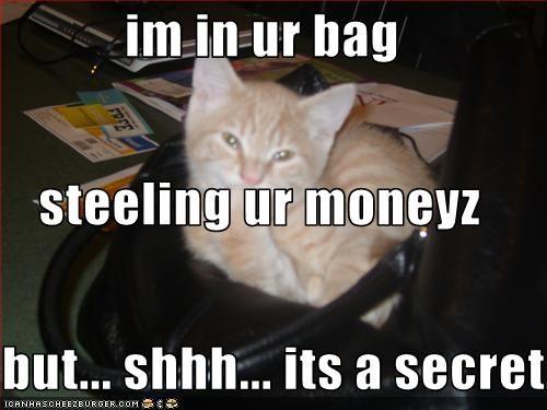 Im In Ur Bag Steeling Ur Moneyz But Shhh Its A Secret