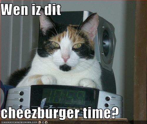 Cheezburger Image 3130939648