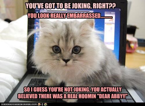 """YOU'VE GOT TO BE JOKING, RIGHT?? YOU LOOK REALLY EMBARRASSED........... SO I GUESS YOU'RE NOT JOKING. YOU ACTUALLY BELIEVED THERE WAS A REAL HOOMIN """"DEAR ABBY!!"""""""