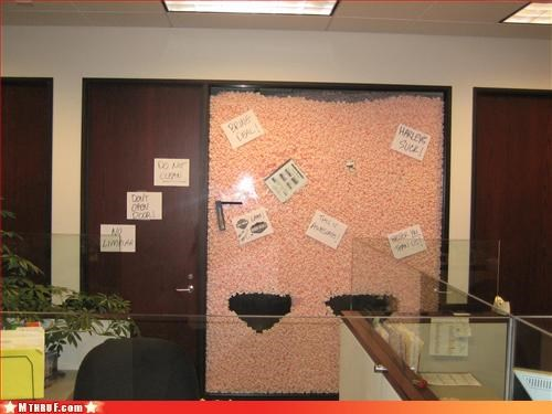 boredom cubicle boredom cubicle prank cubicle rage dickhead co-workers prank sass sneaky wiseass - 3135875840
