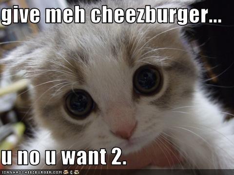 Cheezburger Image 3141203456