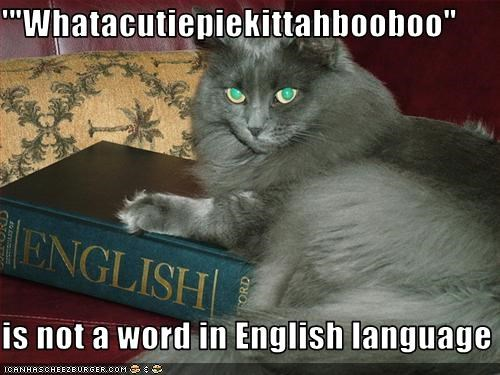 books dictionary reading smart - 3141582592