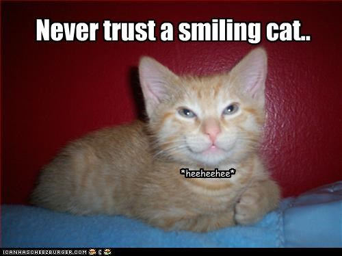 creepy,evil,kitten,smiling