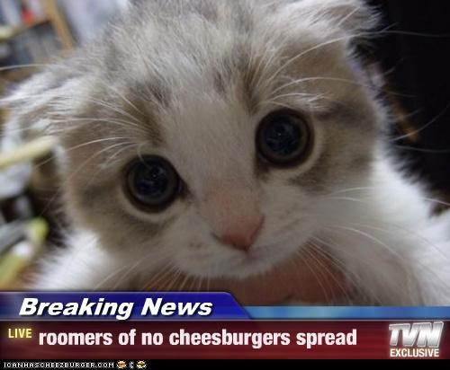 Cheezburger Image 3143677440