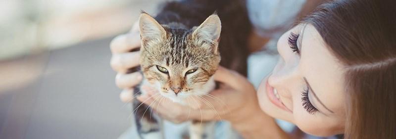 secrets of pet parents