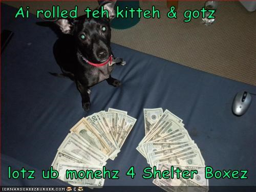 Cheezburger Image 3149200640