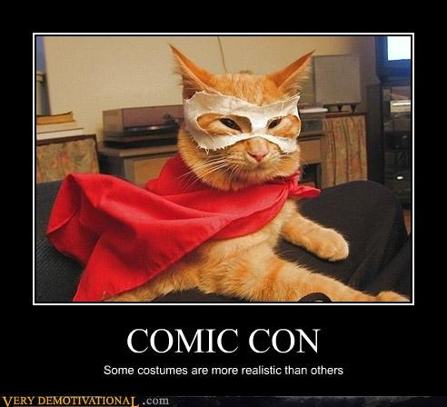 costume,cat,comic con