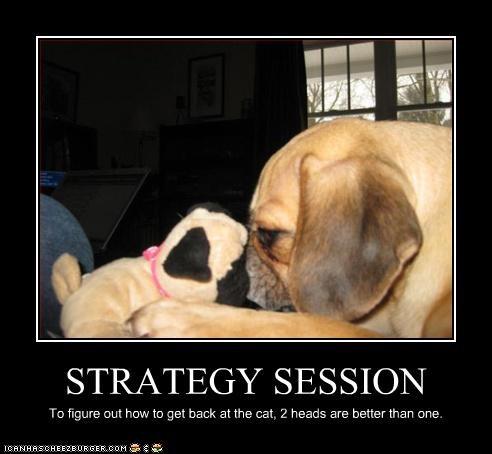 planning puggle stuffed toy - 3149569280