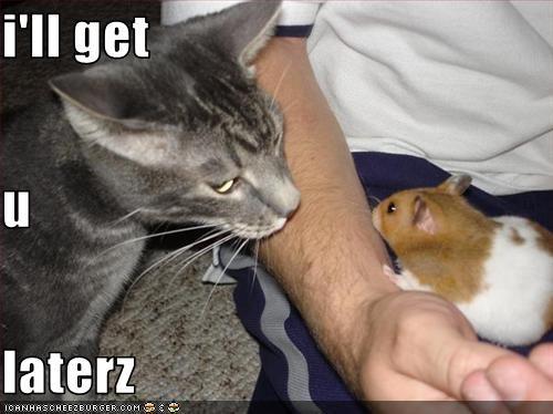 i'll get u laterz