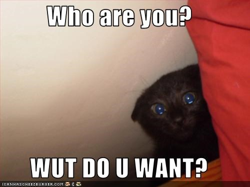 Who are you?  WUT DO U WANT?