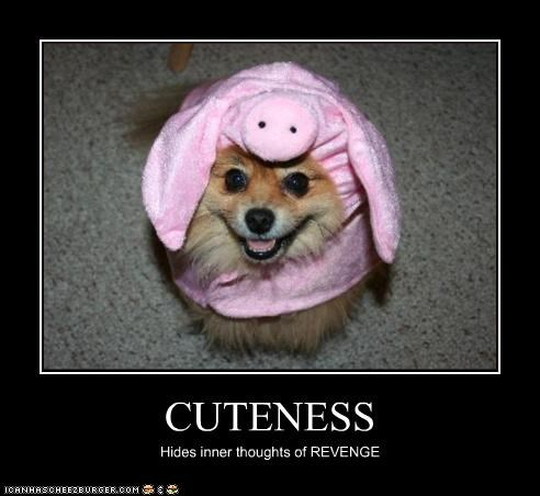 CUTENESS Hides inner thoughts of REVENGE