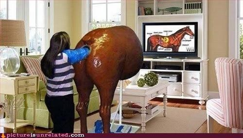 butts horse medicine training wtf - 3153413376