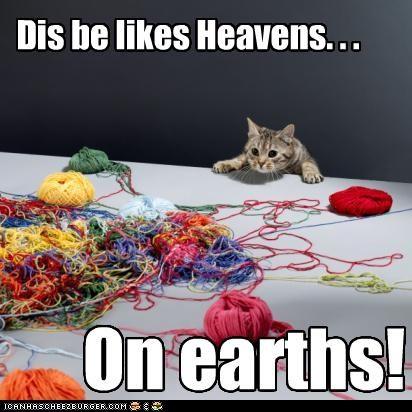 Dis be likes Heavens. . . On earths!